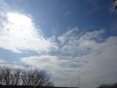 春の様な天気でした.jpg