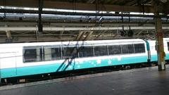 春爛漫の電車が通ります.jpg