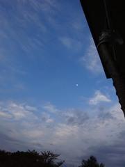 昨日の朝の月.jpg