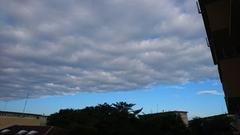 昨日の朝の雲と青空 ハッキリわかれて.jpg
