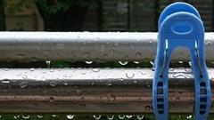 昨日も朝から雨で.jpg