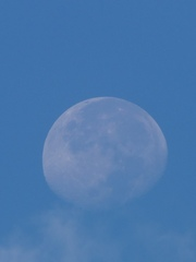 昼間の月は幻想的.jpg