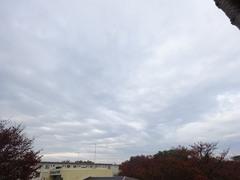 晴れるかな降るかなせめぎ合いの空模様.jpg