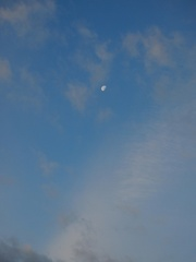 月がもうこんなに欠けて.jpg