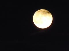月が隠れて行きます.jpg