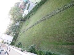 朝 外を見たら刈った草のラインが出来ていました.jpg