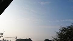 朝から晴れているって素晴らしい.jpg