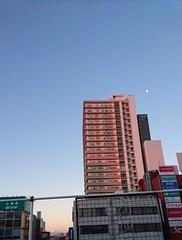 朝の富士山と月.jpg