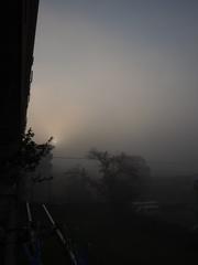 朝陽が昇ってきました なんて幻想的.jpg