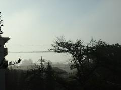 朝靄が.jpg