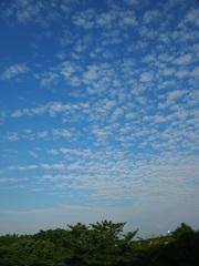 朝6時半 雲が.jpg