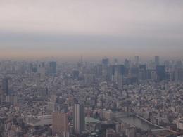 東京タワーを下に見て.jpg