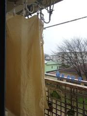 染めた布が足りないので染めたけど曇りね~.jpg