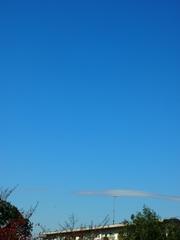 気持ちいい天気~面白い雲ね.jpg