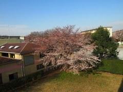 水色の空に春の風.jpg