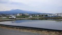 沼津の姉から 富士山と田植.jpg