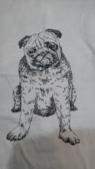 犬♪.jpg