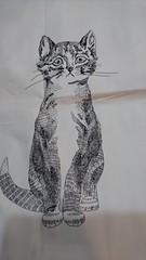 猫♪.jpg