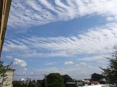 秋の雲だわぁ.jpg