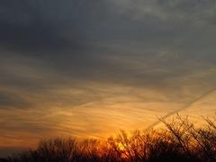 空に飛行機雲の残景が どこへ行ったのかな~?.jpg