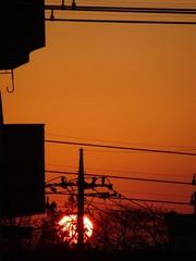 空を染めた大きな朝日.jpg