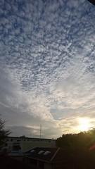 綺麗な雲 カメラカメラ.jpg