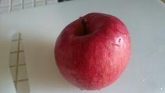 美味しいリンゴ 蜜がいっぱいでした.jpg