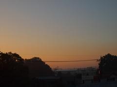聞こえるのは鳥の囀り 静かな日曜の朝.jpg