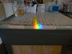 良く働いたキッチンに虹のご褒美が.jpg
