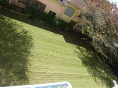 芝刈りが入りました~♪.jpg