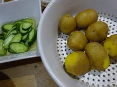 茹でたジャガイモを塩で食べる 美味しいんだな~.jpg