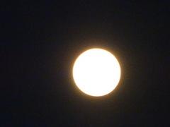 赤くて大きなお月さま.jpg