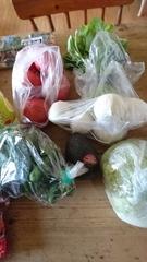 野菜や.jpg