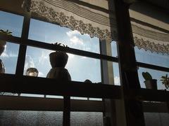 陽が入り過ぎて暑い位の窓辺です.jpg