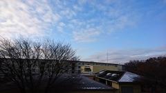 雪と霜 寒いわけね.jpg