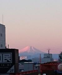 雪をかぶった富士山 ピンクに染まってる.jpg