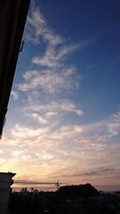 雲のツリーみたい.jpg
