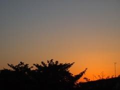 雲一つない夕景.jpg