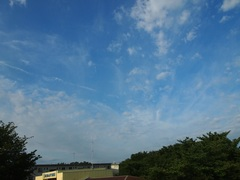 青空の勝ち~~~~♪.jpg