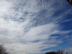 11時前 雲が凄い.jpg