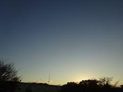 4時過ぎ 夕日が木々の向こうに隠れました.jpg