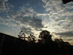 5時43分 朝日が昇って.jpg