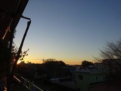 7時前 朝日が温かい.jpg