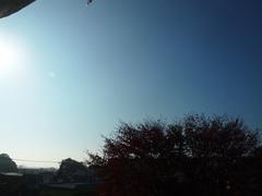 9時前に青空が.jpg