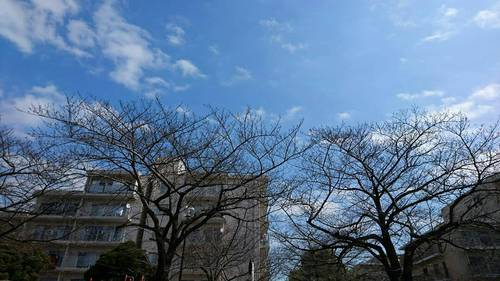 2018-03-12T21:49:06.JPG