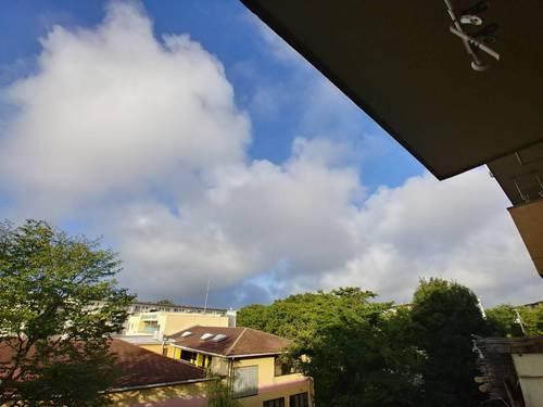 2018-07-31T20:00:49.JPG