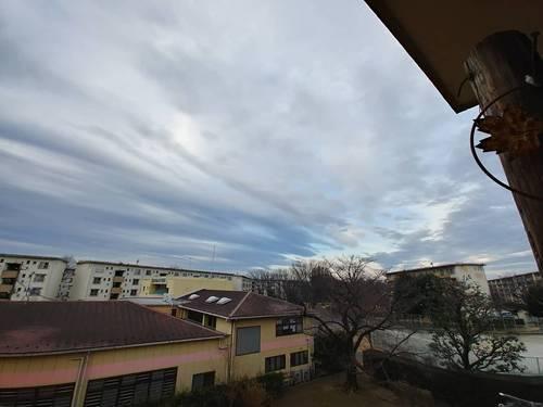 2019-02-01T12:07:49.JPG