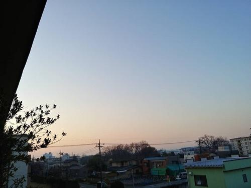 2019-03-14T06:47:02.JPG