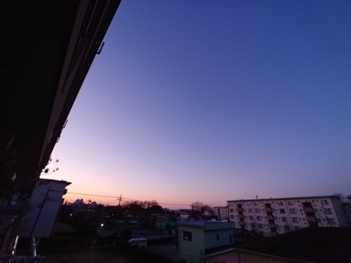 2019-03-16T11:35:01.JPG