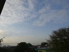 いろんな雲 いい朝だわ.jpg
